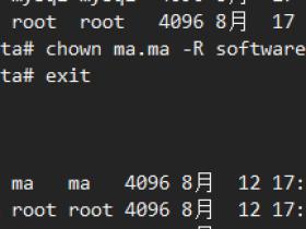 xshell终端主机名和用户名不显示颜色的解决方法