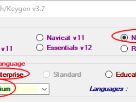 Navicat Premium 12.1.7破解方法