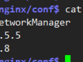 linux设置DNS服务器的几种方法