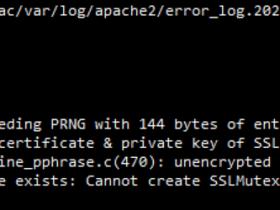 apache错误:cannot create SSLMutex with file '/var/run/ssl_mutex'