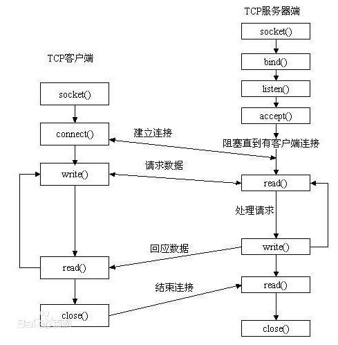 socket网络编程一:socket介绍及函数原语